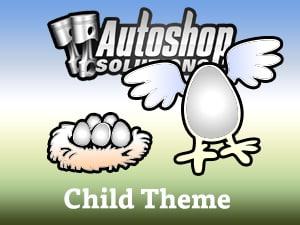 autoshopsolutions child